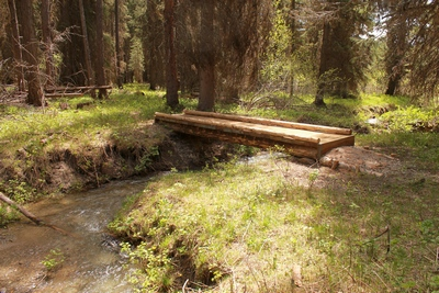 Foot bridge at Clearwater Lake's inflowing stream on its northern shore, which originates high on Ptarmigan Point.  The stream is the east fork of the Clearwater River though it is not named on the map.  In the Lolo National Forest north of Seeley Lake Montana.