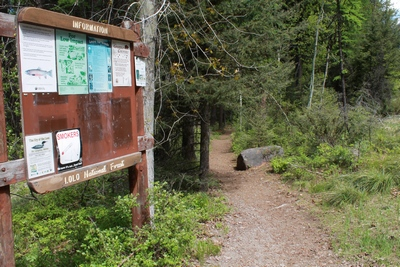 Clearwater Lake Trailhead 5/24/17 in the Lolo National Forest
