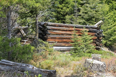 Collapsed miner's cabin on a side road in Coloma (ghost town)
