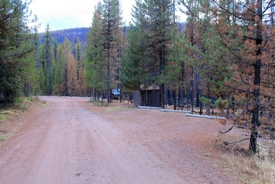 The bathroom and parking lot for the Morrell Falls trailhead survived the fire.  There are some burned trees nearby.