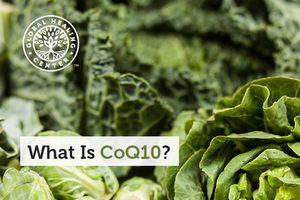 What is CoQ10 - globalhealingcenter.com