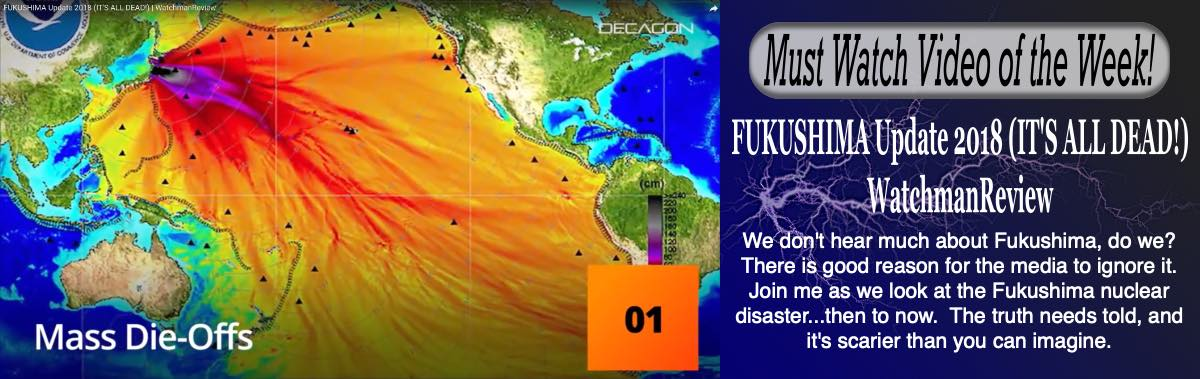 Fukushima Update 2018 (IT'S ALL DEAD) WatchmanReview - We don't hear much about Fukushima.  There is good reason for the media to ignore it.  The truth needs to be told and it is scarier than you can imaging. - Published to youtube Oct. 5, 2018