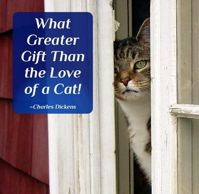 What Greater Gift Than the Love of a Cat!  ~Charles Dickens