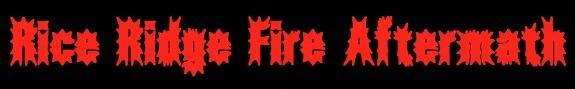 Rice Ridge Fire Aftermath - Seeley Lake, Montana