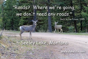 Roads? Where we are going, we don't need any roads.  Seeley Lake Montana.  seeleylakelife.com
