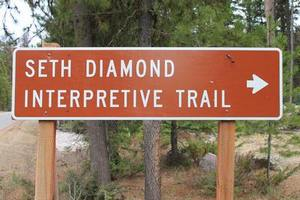 Seth Diamond Interpretive Trail sign on Boy Scout Road