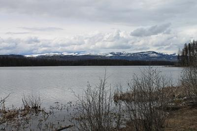 The Mission Mountains as seen across Seeley Lake from Big Larch Nature Trail looking to the northwest