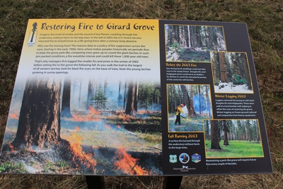 Restoring Fire to Girard Grove - Sign at the Girard Grove trailhead in Seeley Lake, MT 4/18/17