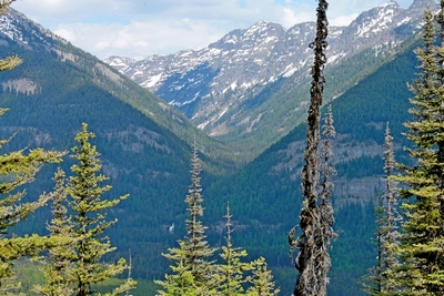 View of Morrell Falls and the Grizzly Basin Trail route heading northeast between the slopes of Matt mountain on the left and Crescent mountain on the right as seen from FR 4343 on 5/29/17 near Seeley Lake Montana.