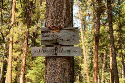 Old wood signs posted on a tree near the beginning of the Monture Creek Trail in Powell County western Montana north of Ovando
