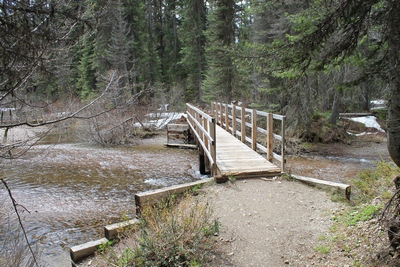 Approaching the bridge across Morrell Creek upon returning back from Morrell Falls.  Some snow remains on the ground May 18, 2017