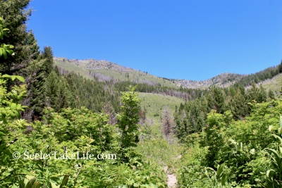 On the Pyramid Pass Trail #416 opening into the mountain's central valley, Seeley Lake, MT 7/21/19