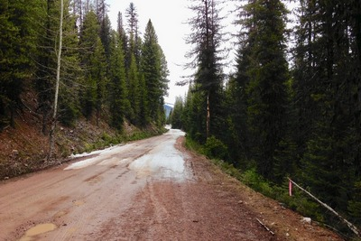 on May 1st, 2017, Forest Road 4353 to Morrell Falls Trailhead became impassable on May 1st, 2017 because of snow up ahead.