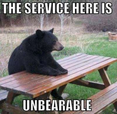 The service here is unbearable.  Picture of a bear sitting patiently at a picnic table.