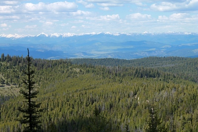 View  from the top of Union Peak (in the Garnet range in western Montana) looking north-northeast to the Swan Mountain Range in the distance.